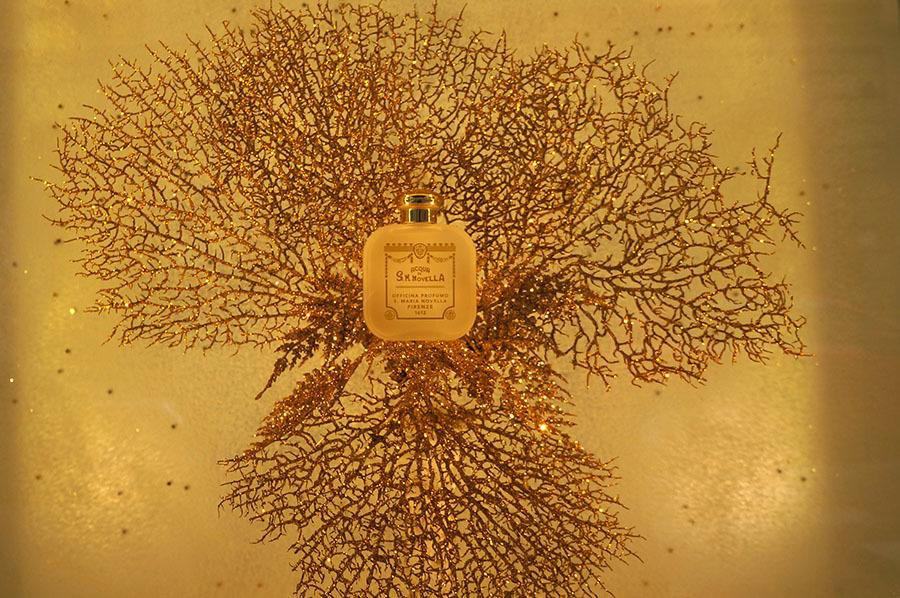サンタマリアノヴェッラ薬局のティールーム〜フィレンツェの歴史ある名店_f0106597_06015231.jpg
