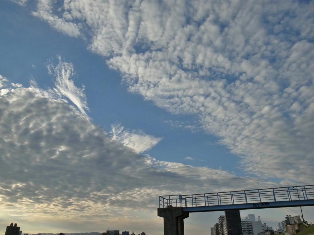 空をながめる日 (*^_^*)_c0049299_22355042.jpg