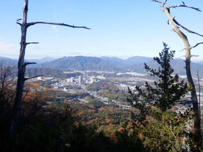 裏山ルート その(1) _f0219710_09420849.jpg