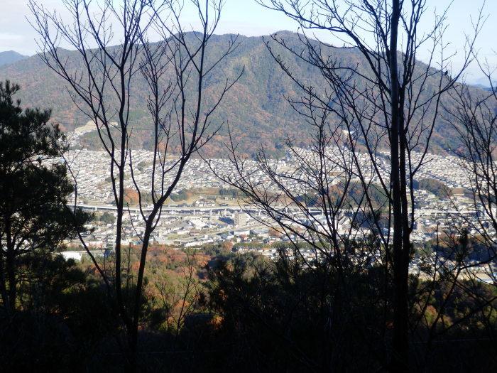 裏山ルート その(3)_f0219710_11234711.jpg