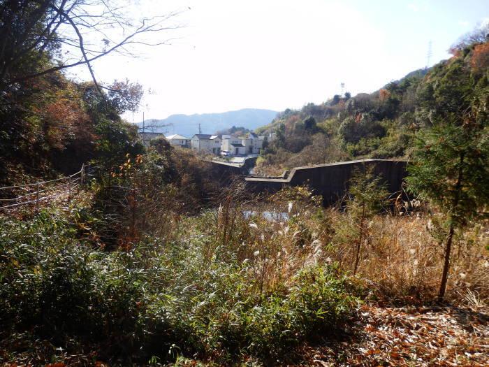 裏山ルート その(3)_f0219710_11361260.jpg