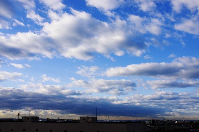 層積雲と高積雲_b0268615_765418.jpg
