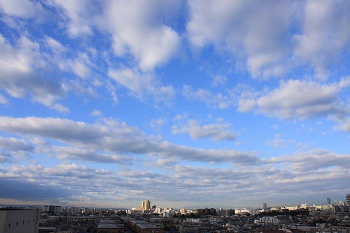 層積雲と高積雲_b0268615_78586.jpg