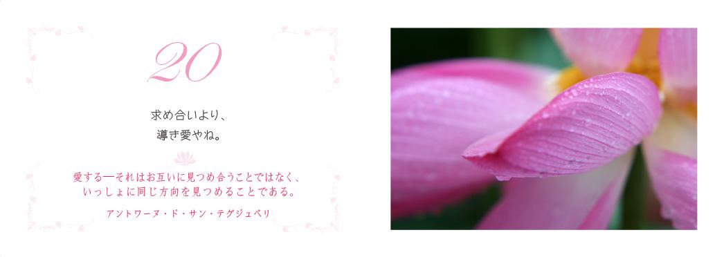 f0355165_1454171.jpg