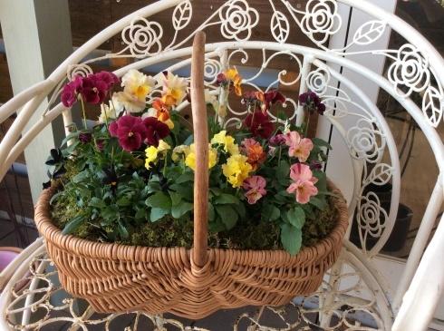 宮崎産まれの花は素晴らしい‼︎_b0137969_21001902.jpg
