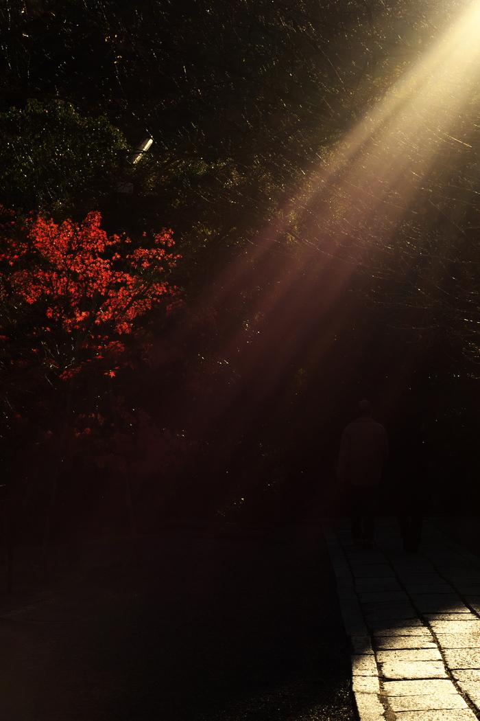 紅葉2015   光明寺                         _f0021869_035285.jpg