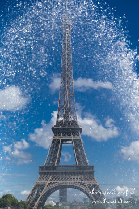 memories 2015 ② パリの街フォト_c0137872_10221127.jpg