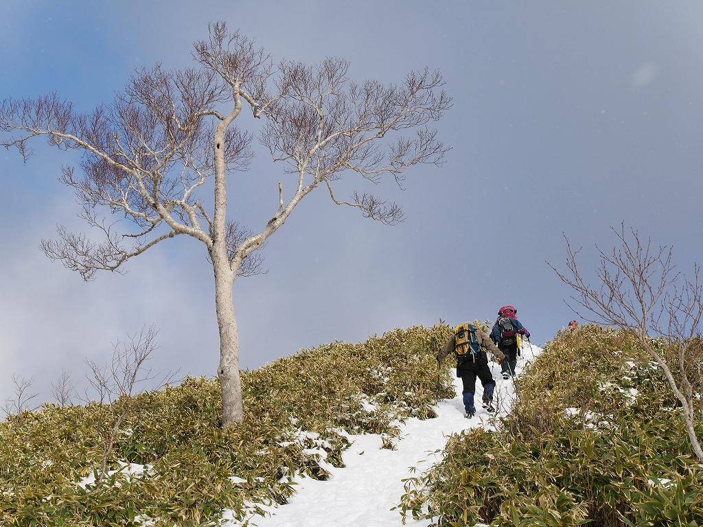 イチャンコッペ山と幌平山、12月20日-その1-_f0138096_10463673.jpg