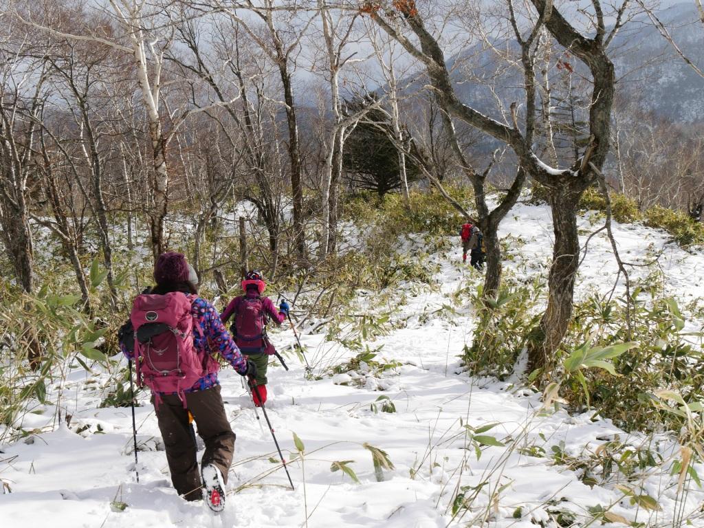 イチャンコッペ山と幌平山、12月20日-その1-_f0138096_1046585.jpg