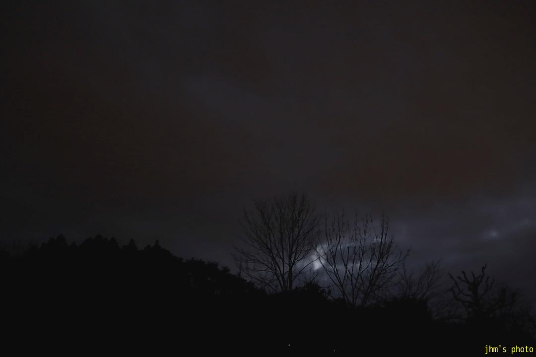 夕暮の暗闇と静の木々_a0158797_0101516.jpg