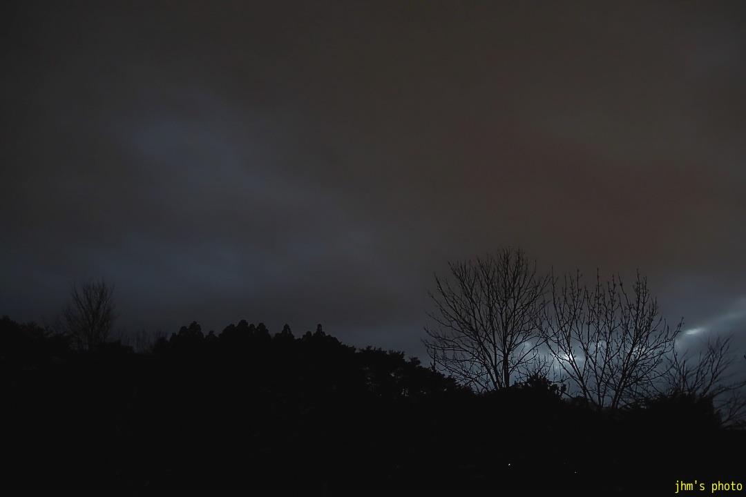 夕暮の暗闇と静の木々_a0158797_095410.jpg