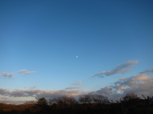 青に白い月_d0336530_20241165.jpg