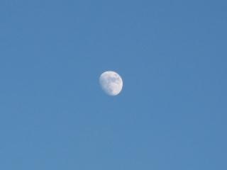 青に白い月_d0336530_20241561.jpg