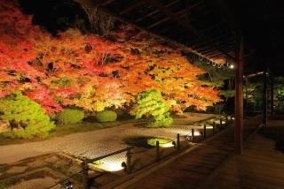 新娘道成寺と秋の言の葉youtubeにアップいたしました。_b0299052_11214967.jpg