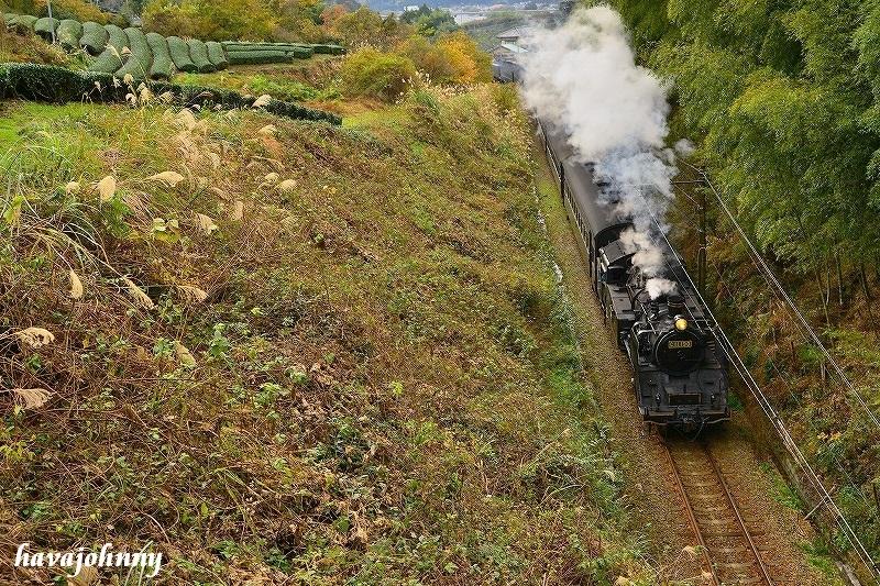 C1を上から目線で・・・~SL大井川鉄道~_c0173762_2234256.jpg