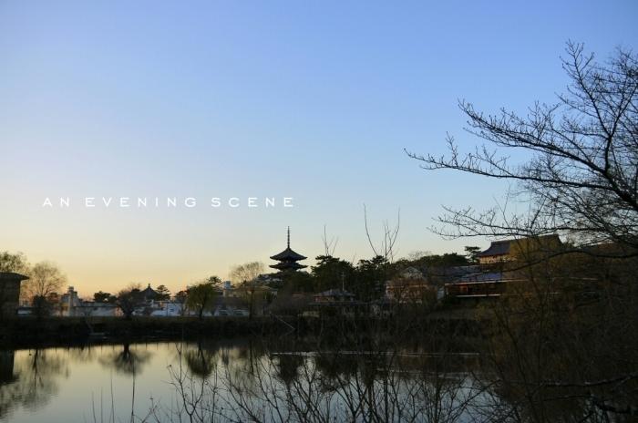 2015 年の瀬の奈良。。。_c0220065_23594935.jpg