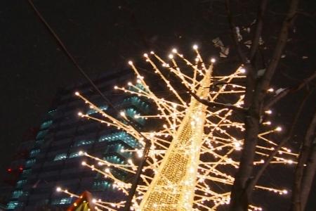 札幌大通公園のホワイトイルミネーション _b0106766_21155550.jpg