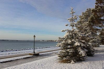 つかの間の雪景色_c0353373_22420733.jpg