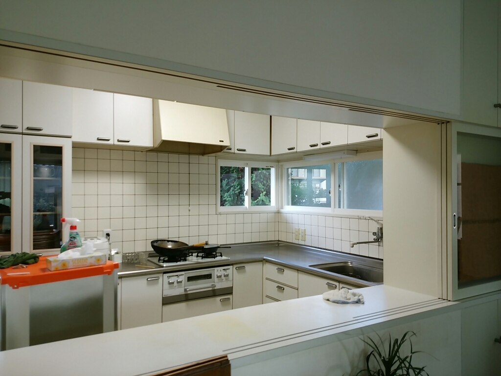 台所の掃除3日目_f0255704_22564809.jpg