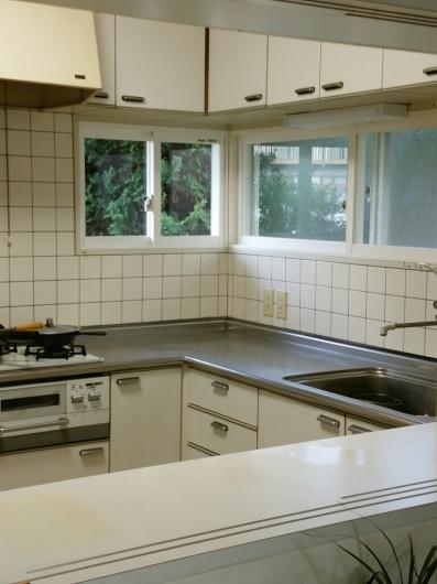 台所の掃除3日目_f0255704_22565149.jpg