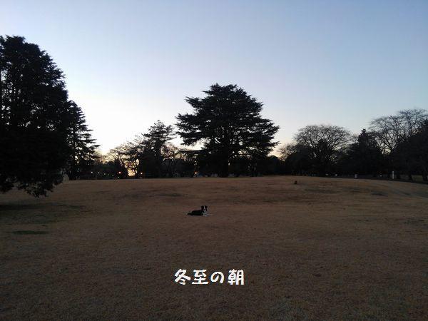 d0224111_22102104.jpg