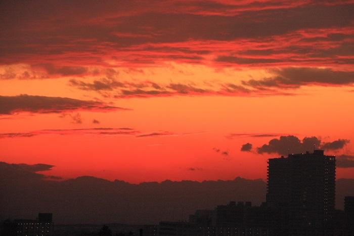 夕映えの雲-Ⅱ_b0268615_831378.jpg