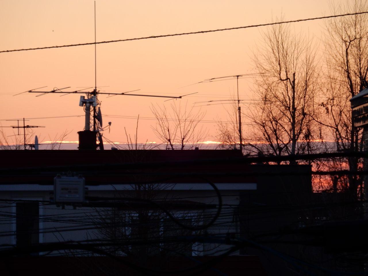 冬至の翌朝_c0025115_20153528.jpg