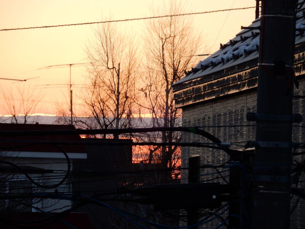 冬至の翌朝_c0025115_20153872.jpg