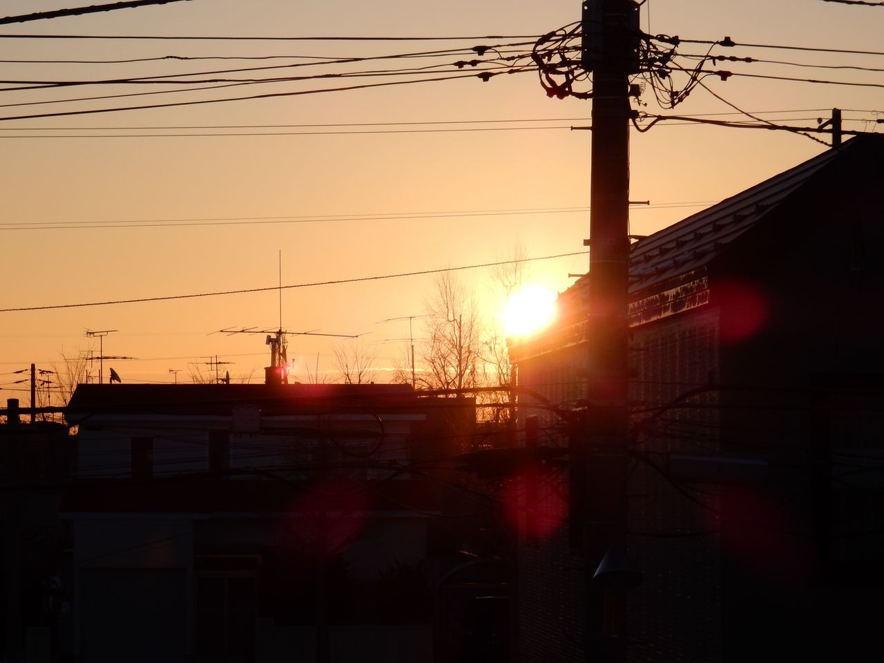 冬至の翌朝_c0025115_20155177.jpg