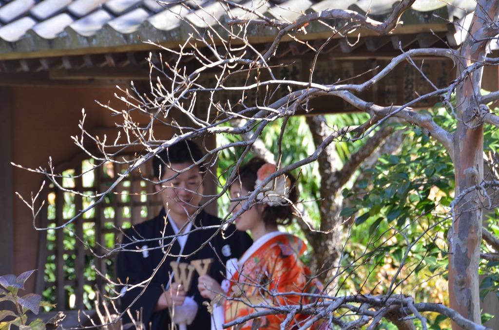 鎌倉紅葉 海蔵寺_d0065116_21133354.jpg