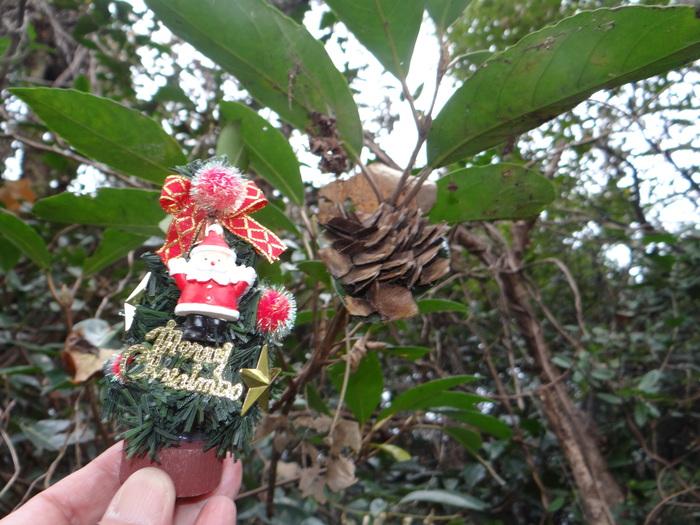 Merry Christmas!_d0254540_10562137.jpg