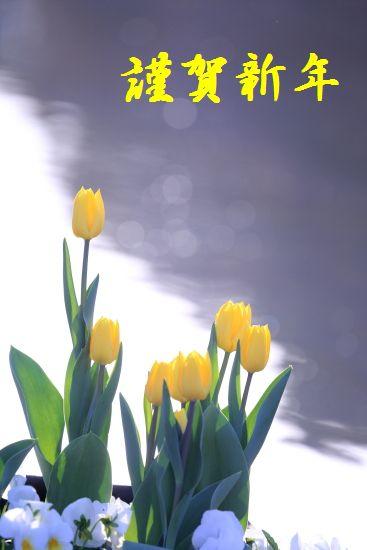 f0151200_792522.jpg