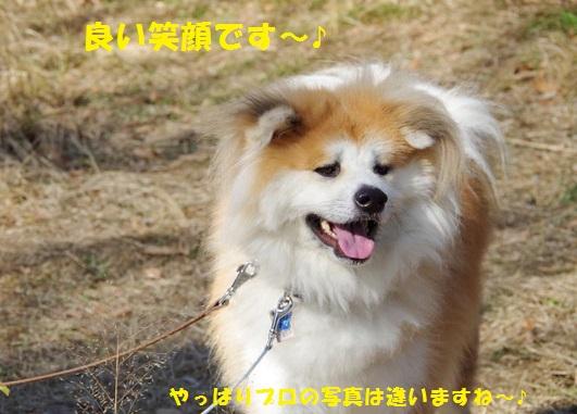 f0121712_110252.jpg