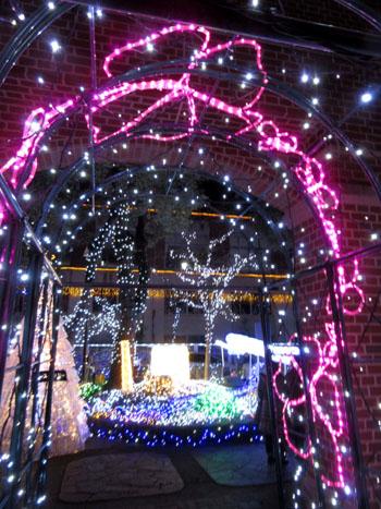 クリスマスイルミネーション_e0048413_18254081.jpg