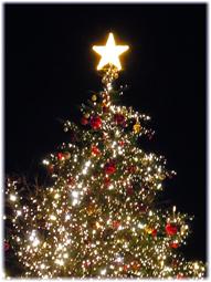 暖かいクリスマスイブ_d0221430_1825390.jpg