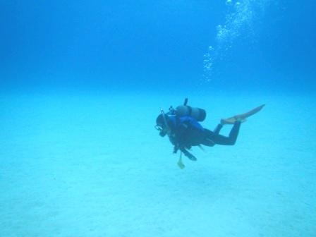 透明度最高な黒島へ~♪_a0189838_1621198.jpg