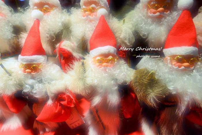 Merry Christmas!_a0322950_0384643.jpg