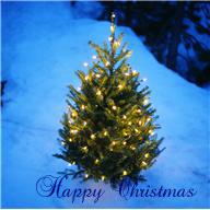 Have a happy christmas!_e0108851_15114581.jpg