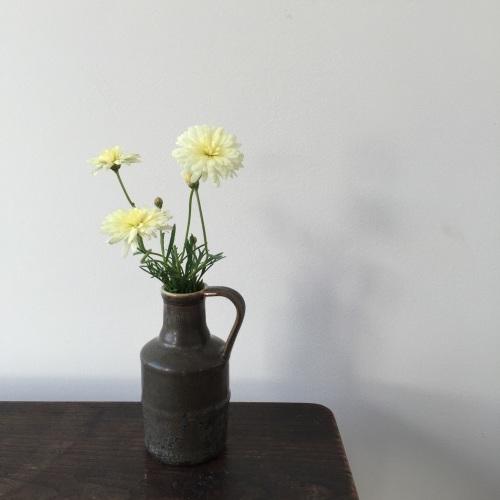 「Fleurs et de la poterie ー花と陶器ー 内山太朗 小菅幸子 二人展」終了しました。_e0060555_11174463.jpg