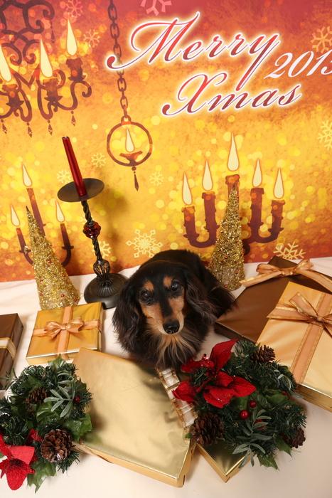 2015 Christmas eve 撮影しちゃった ①_c0134862_0113670.jpg