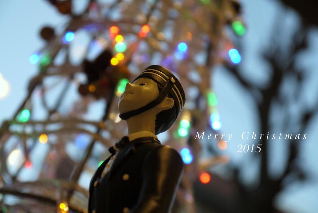 Merry Christmas 2015 ***_c0220065_23234294.jpg