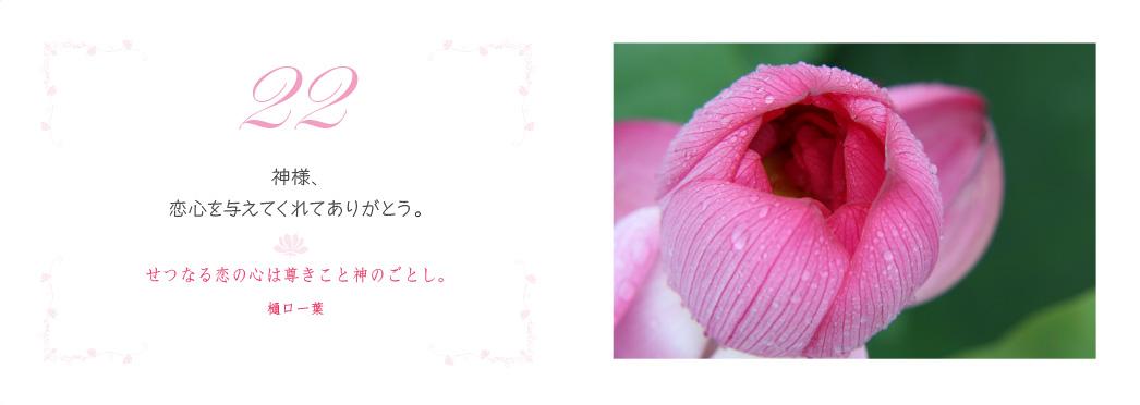 f0355165_10561447.jpg