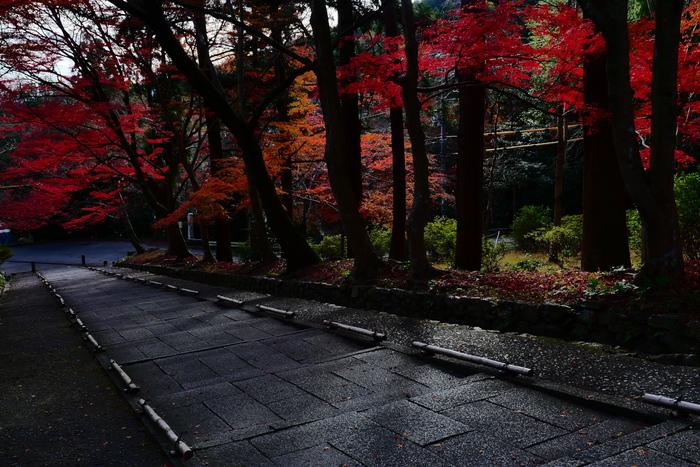 紅葉2015   毘沙門堂                         _f0021869_23181623.jpg
