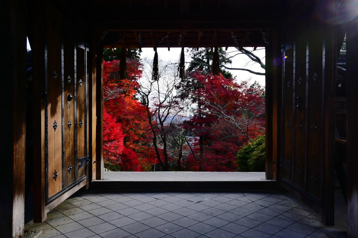 紅葉2015   毘沙門堂                         _f0021869_23185376.jpg