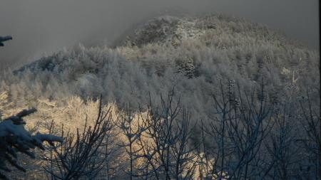雪景色の朝_e0120896_07541476.jpg