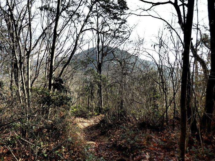 火山から武田山_f0219710_13482470.jpg