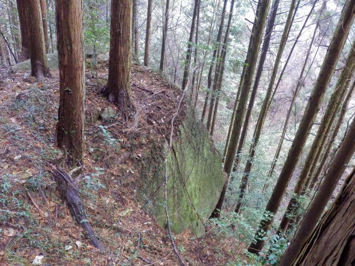 火山から武田山_f0219710_14070313.jpg