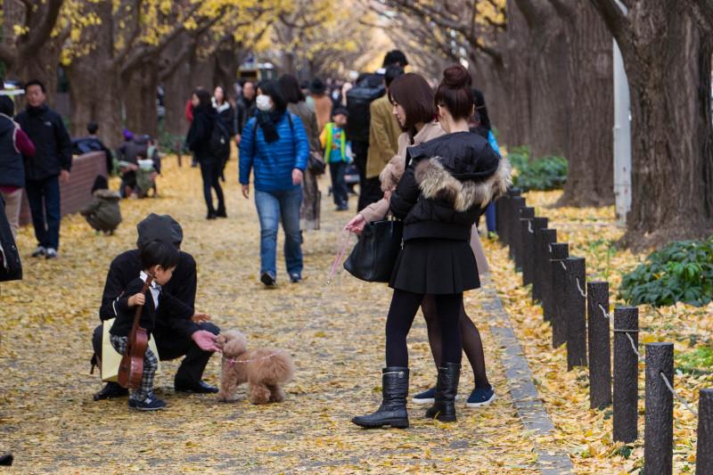 Dog  ・・・外苑・・・_f0333031_04482316.jpg