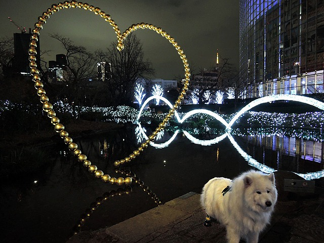 Merry Christmas!_c0062832_12205876.jpg