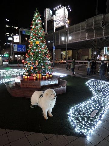 Merry Christmas!_c0062832_1221876.jpg